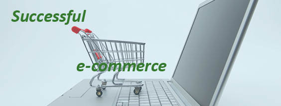 Successful e-commerce